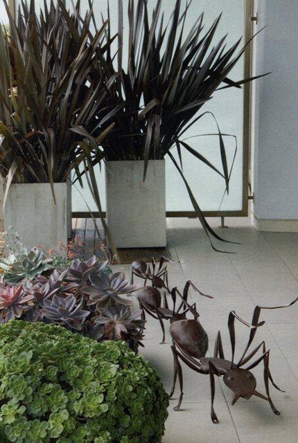 Jardines de cactus y suculentas macetones - Jardines de cactus y suculentas ...