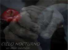 Cielo Nocturno - Un Amor Inevitable