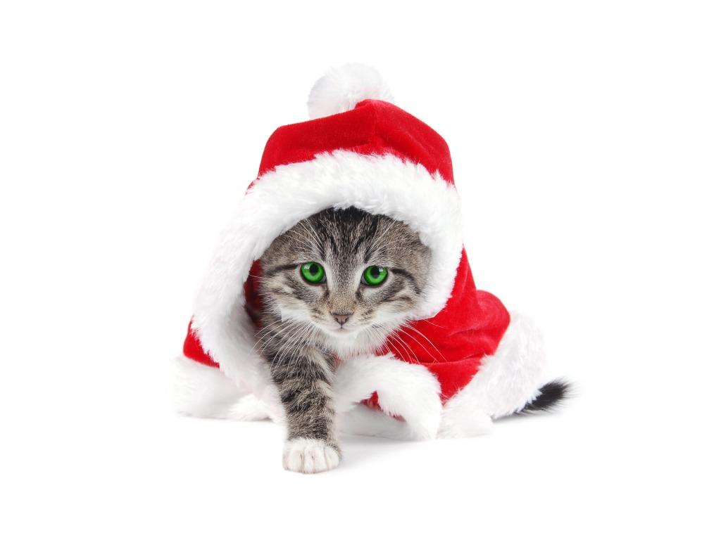 ... Djed Mraza - download besplatna pozadina za desktop Božićne slike