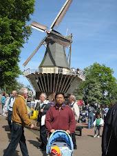 Kincir Angin Rotterdam/Amsterdam