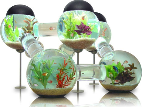 Funtrublog awesome aquariums 5 cool modern fish tank for Cool tropical fish