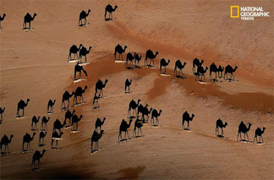 Amazing Aerial Photograph Seen On www.coolpicturegallery.us