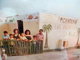 LAS PALMERAS - 1979