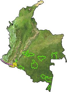 Campo Castilla en Colombia
