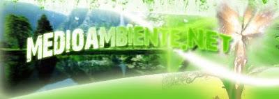 Blog sobre el tema ambiental