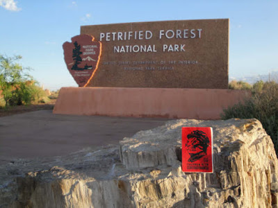 petrified forest arizona