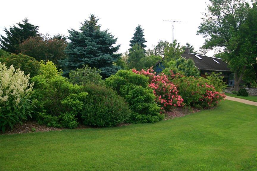 mature shrub border Landscape Pinterest