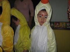 snug as a bug in a rug.../duck