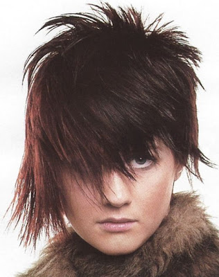 Rock band Punk Hairstyle