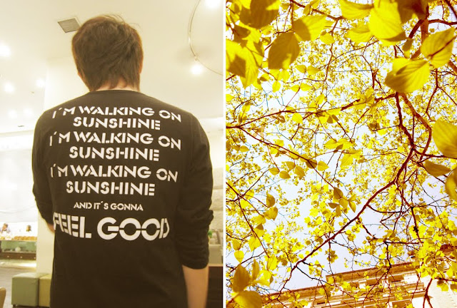 walking on sunshine lyrics on t-shirt + looking up at yellow leaves