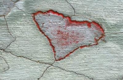 Сердце мира на земном ландшафте. Красное сердце в природе фото креатив. Нерукотворное сердце, созданное природой.