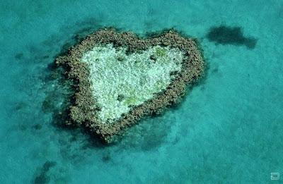 Коралловый риф необычной формы. Природное сердце мира среди океана создано кораллами. Креативный дизайн кораллового острова фото. Остров в форме сердца среди моря.