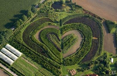 Сердце мира в окружающей природе фото креатив. Красивая усадьба в форме сердца. Рукотворное сердце - креатив картинка. Земельный участок обработан в форме сердца. Криатив.