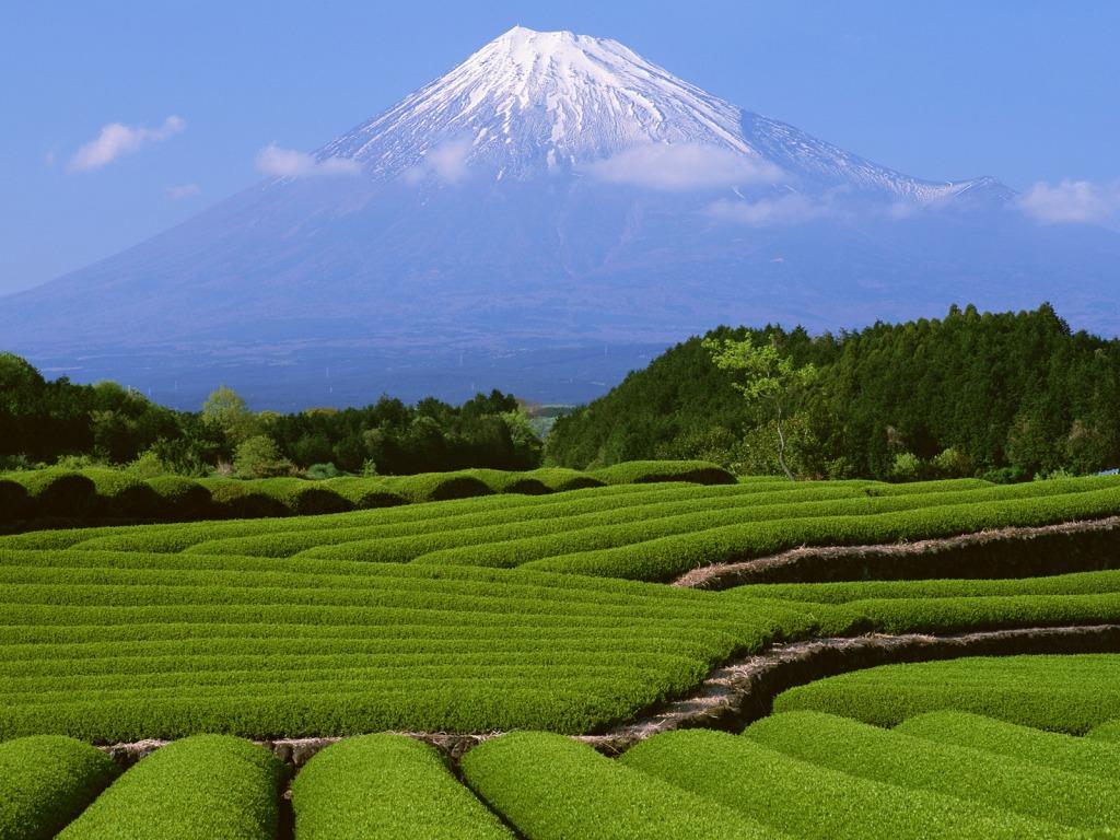 http://3.bp.blogspot.com/__vdw0BH-Zc0/TID92cQzZTI/AAAAAAAAACc/SmrC9_eLdp8/s1600/fuji-mountain.jpg