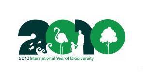 logo International Year of Biodiversity
