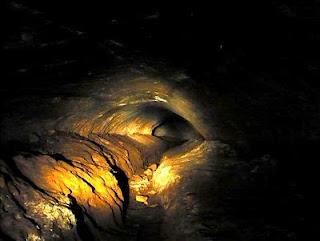 paleo burrow