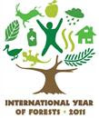 2011 International Year of Forests