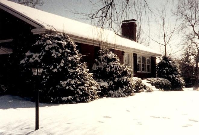 Blue Ridge in the snow!