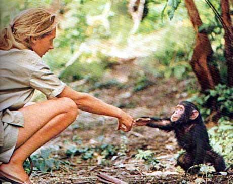 Comprendre les bêtes, un don