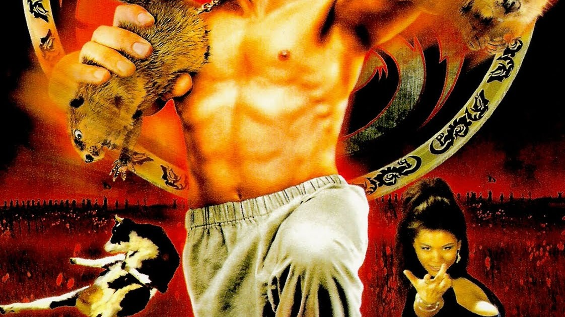 Cin-club Kung Pow : enter the fist ! - lEcran Miroir