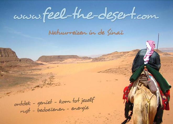 feel-the-desert !