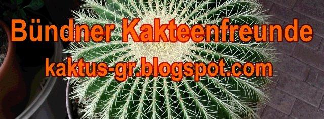 kaktus-gr - Bündner Kakteenfreunde