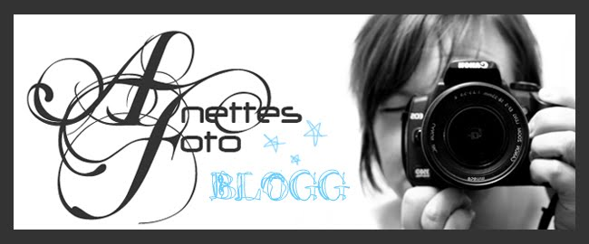 Anettes Foto