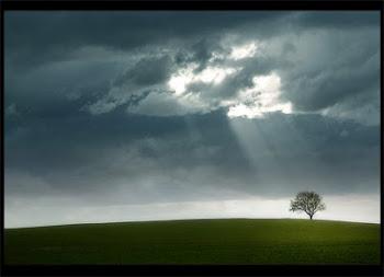 Jehová será la esperanza de su pueblo, y la fortaleza de los hijos de Israel.