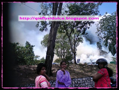 hutan gomabk terbakar