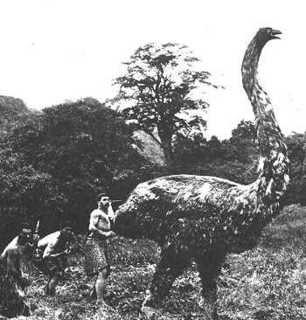 Animales extinguidos por la mano del hombre