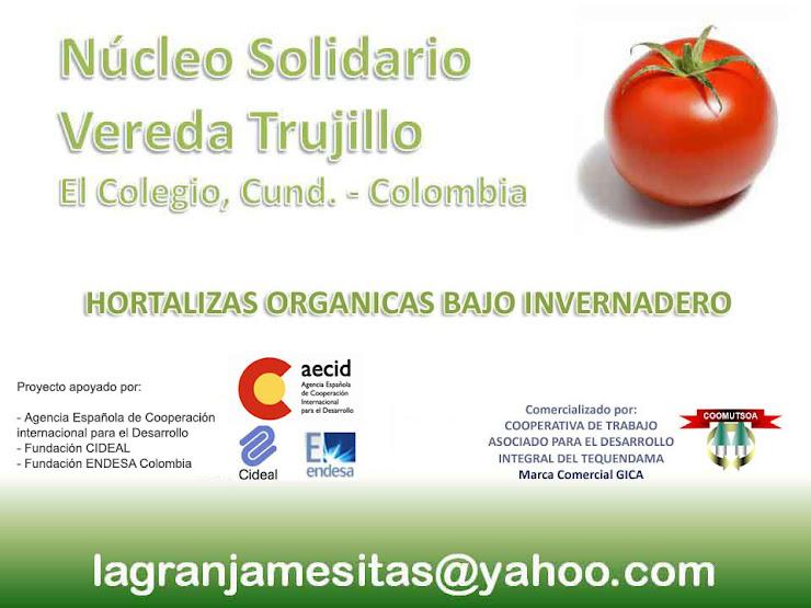 Nucleo Solidario Vereda Trujillo