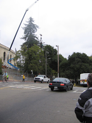 UC Berkeley police negotiating with tree sitters