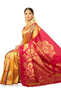 Anushka Shetty in Silk Saree for Chennai Silks Photo Shoot-thumbnail-2