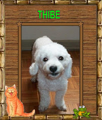 THIBE