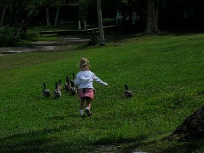 Dara + ducks