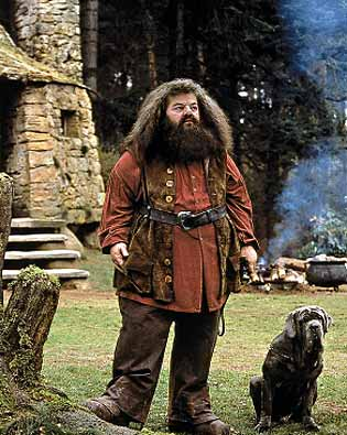 Jr late night blogs jr 39 s harry potter and the sorcerer 39 s What house was hagrid in