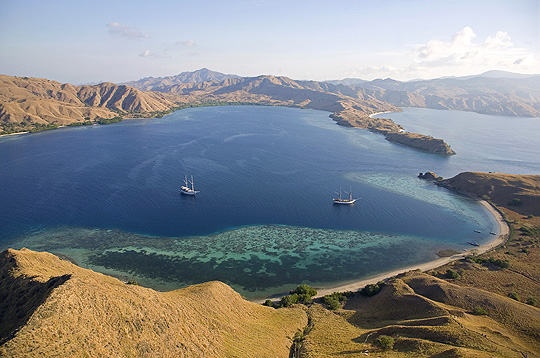 Komodo Island Movie Komodo Island The Biggest