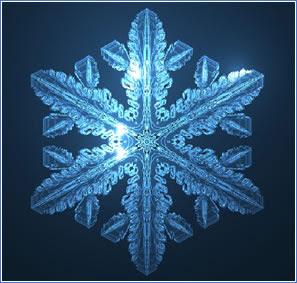 La estrella de nieve