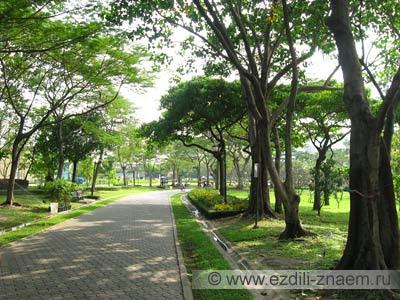 Таиланд. Бангкок. Парк Чатучак