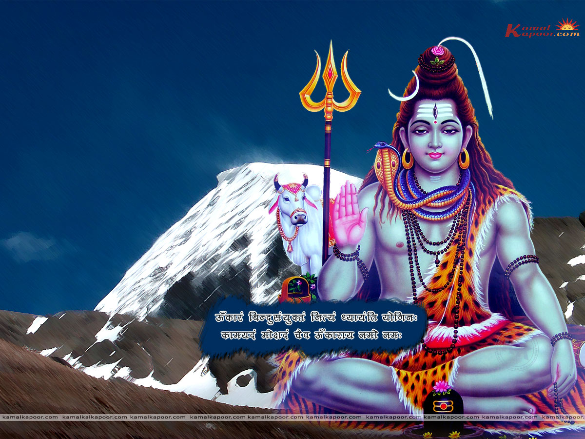 Shiva Wallpaper956[2]