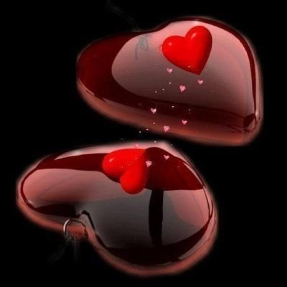 i love u rose wallpaper. i love u hearts wallpapers.