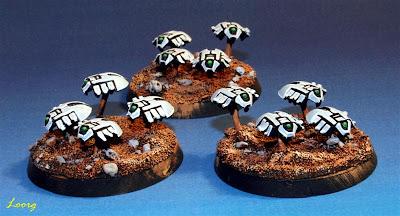 Enjambres de escarabajos canópticos de los Necrones