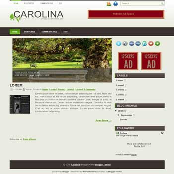 carolina blogger template convert wordpress theme to blogger template with image slideshow template
