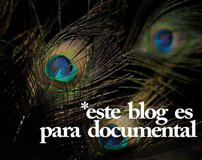 este blog es para documental
