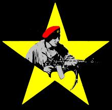 ARIS RESISTANCE