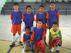 ARSENAL MIRIM - 2009