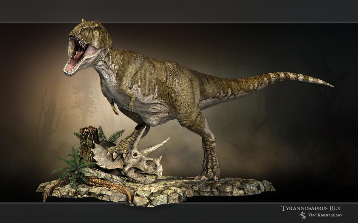 El tiranosaurio rex for Tyranosaurus rex