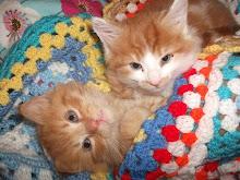 Tigger & Rusty