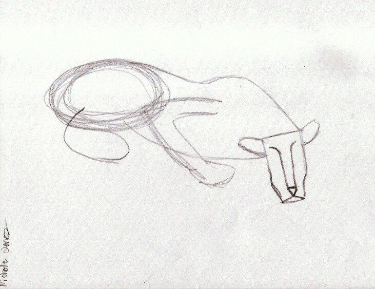Line Drawing Jaguar : Star sketchers weeks lines shapes patterns proportions