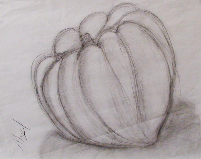 Contour Line Drawing Of Natural Forms : Natural bridges sketchers weeks form contours